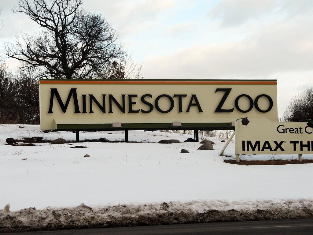 Minnesota-26