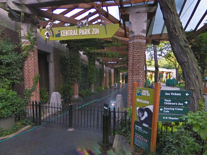 zoologico-de-central-park
