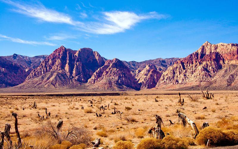 Turismo de Nevada, Desierto del Estado