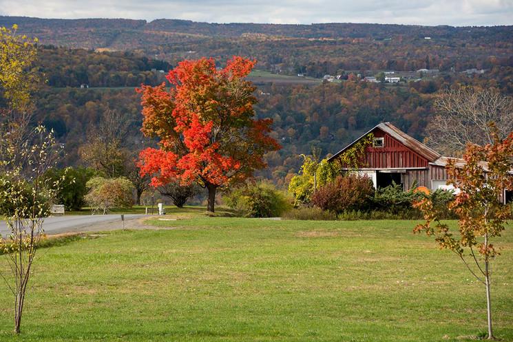 lugares-para-ver-en-Ithaca-USA