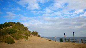 La Playa Cahoon Hollo